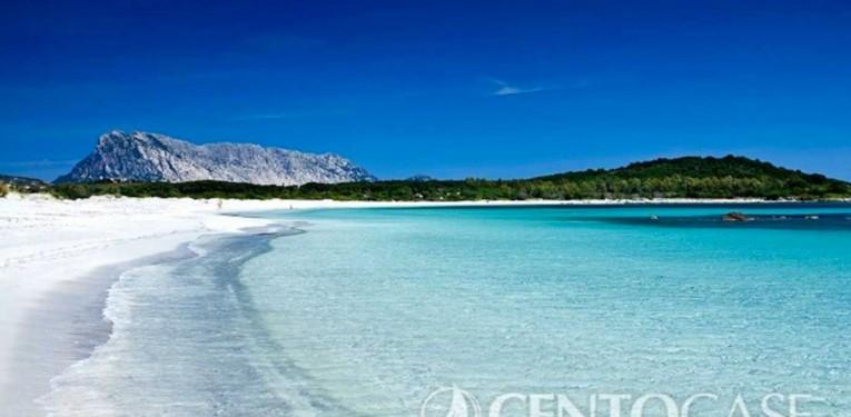 Centocase Sardegna - Affitti e vendite | San Teodoro