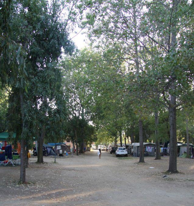 Camping-San-Teodoro-3